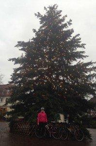 Claudi gives it a TRI - Weihnachtsbaum Seligenstadt