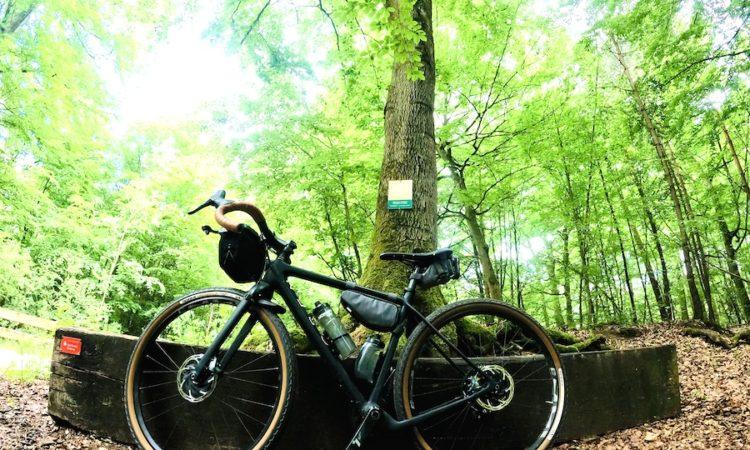 Evoc Tasche am Fahrrad
