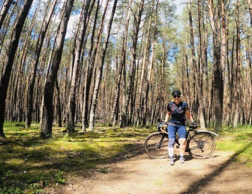 Wald bei Babenhausen