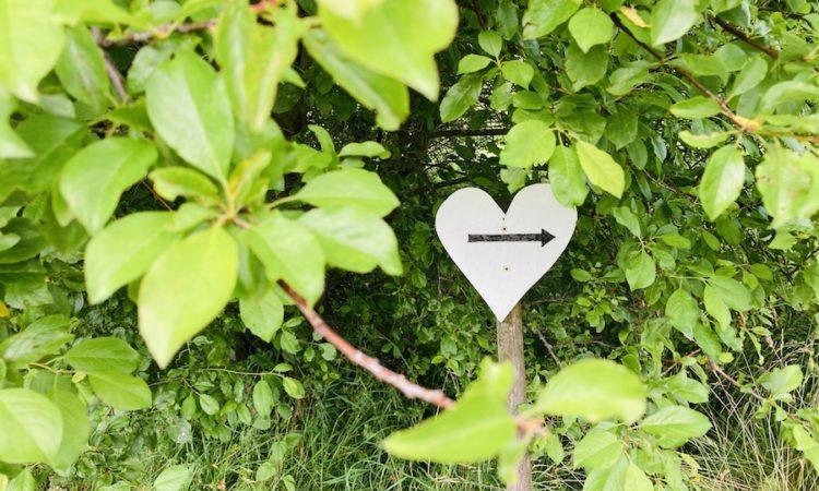 Wegweiser Herzweg des Friedens Bergedorf