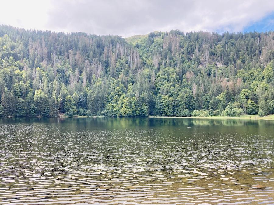 Hochschwarzwald Feldsee